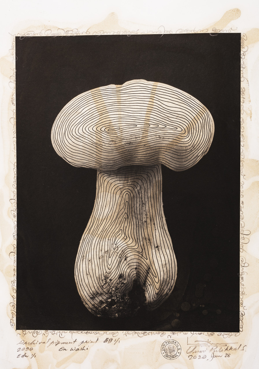 'The Mushroom', 2020, stained and over-drawn photograph, Japanese Bamboo Washi Paper, 13x19 inches, Unique Edn.